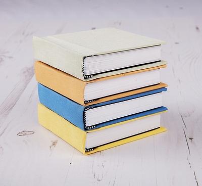 Mini Albums & Books