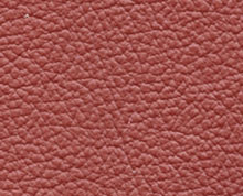 Birch Bordo Faux Leather Photo Album Cover